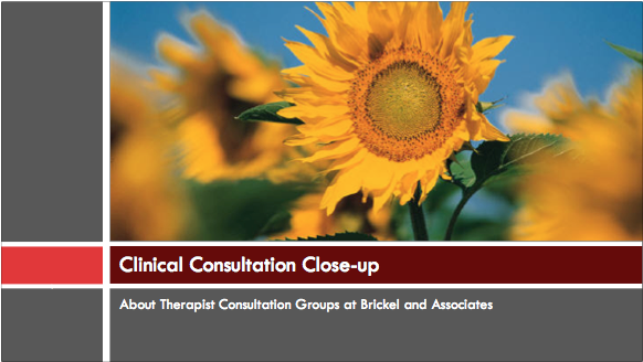 clinical consultation guide